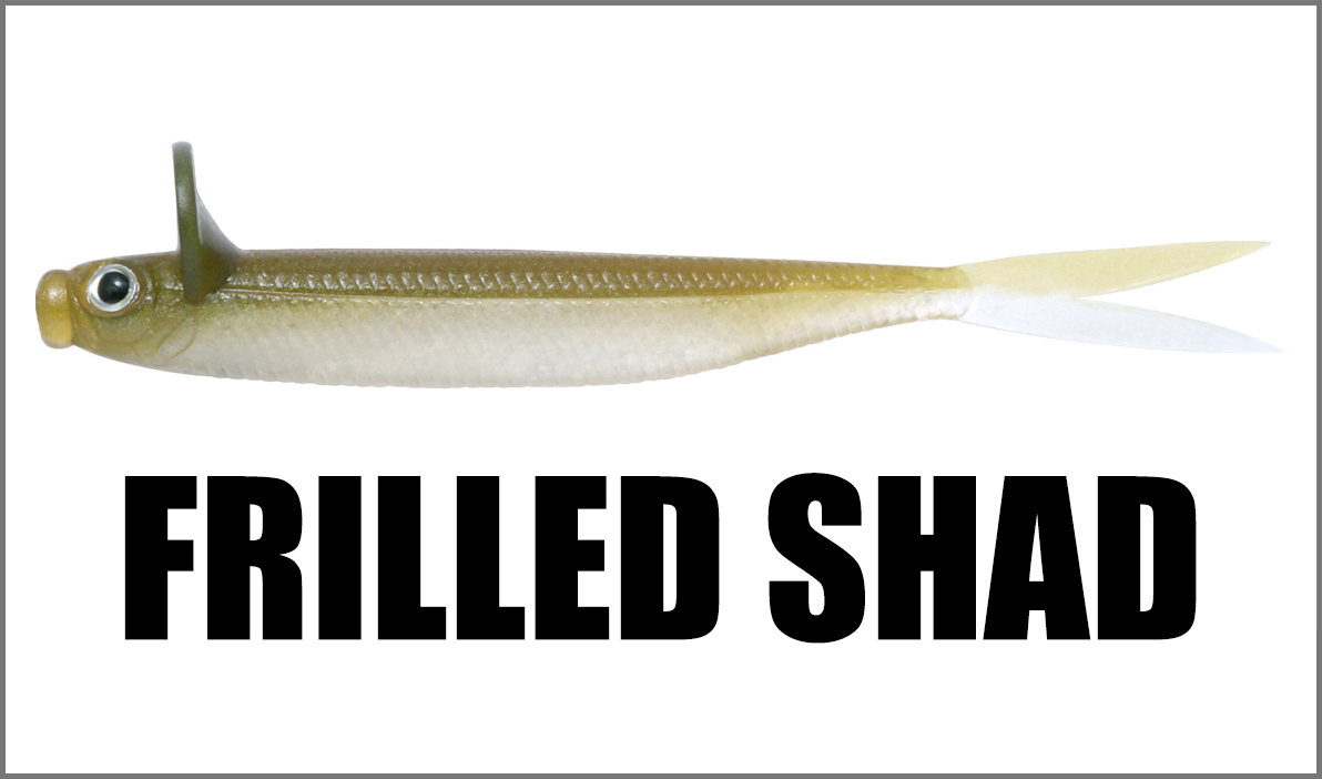Frilled Shad
