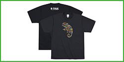 [B-TRUE] Dry T-Shirt Type C
