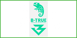(B-TRUE) Glow Mark Decal