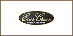 EverGreen 3D Sticker