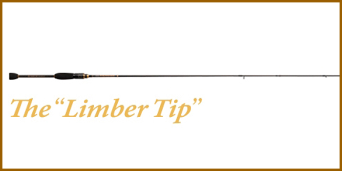 SALTY SENSATION The Limber Tip