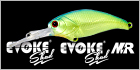 Evoke Shad - Evoke Shad MR
