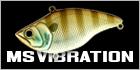 MS Vibration