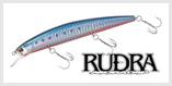 Rudra S