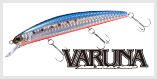 Varuna S