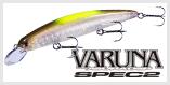 Varuna Spec2 SF