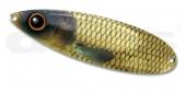 03-Gold Carp