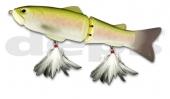 04-Rainbow Trout