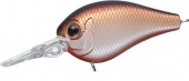 061-Brown Shad
