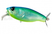 10-Blue Back Shad