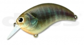 10-Real Blue Gill