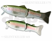 12-Rainbow Trout