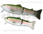12-Rainbow Trout