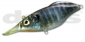 14-Real Blue Gill
