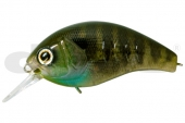 15-Real Blue Gill