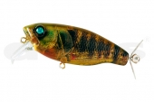 16-Real Blue Gill