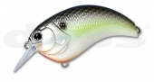 18-Black Back Shad