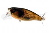 18-Gold Carp