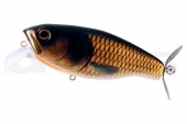 20-Gold Carp