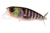 22-Real Pearl Gill