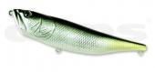 23-Yellow Tail Shad