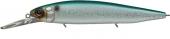244-Emerald Shiner