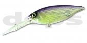25-Purple Shad