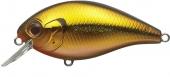 283-Golden Shad