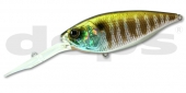 35-Prism Gill