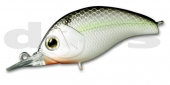 36-Black Back Shad