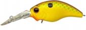 361-Citrus Shad