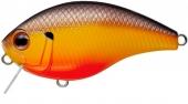 364-Panfish