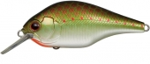 373-Olive Copper Shad