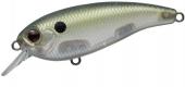390-Green Mullet