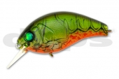 43-Watermelon Craw
