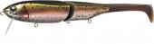 607-Rainbow Trout (P)
