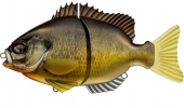 640-Grass Bream