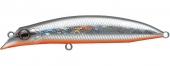 717-Seguro Orange Belly