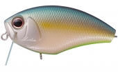 B64-S Jade Shad Chart Belly