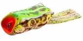CF28-Real Ama Frog
