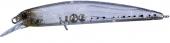 DM83-Icefish