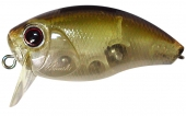 G01-Clear Minnow