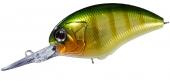 GH45-Green Gill