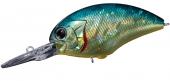 H03-American Sunfish