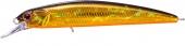 H04-Back Gold Orange Belly