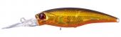 H04-Gold Black Orange Belly