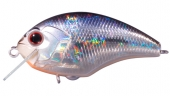 H09-Crystal Blue Shiner.jpg