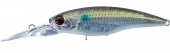 HS12-Striped Mullet