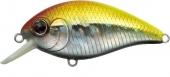 N235-Sight Flash