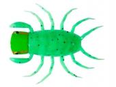 OM21-Grasshopper